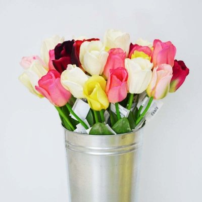 Тюльпаны Цвет В Ассортименте